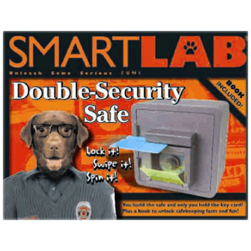 Double-Security Safe
