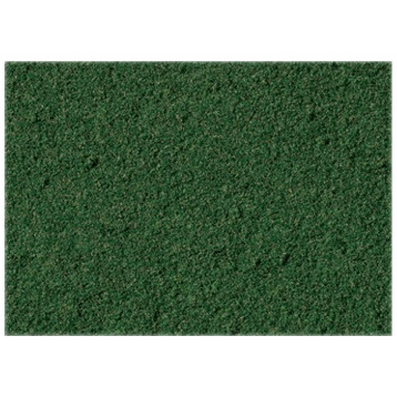 Moss Green Ground Cover