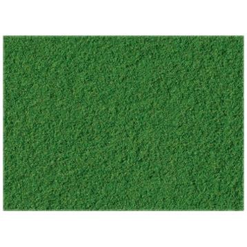 Spring Green Turf