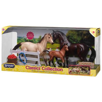 Sport Horse Family