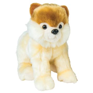 Sammy The Pomeranian