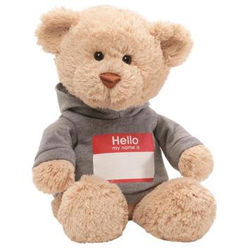 Hello My Name Is Teddy Bear