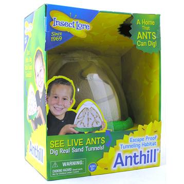 Ant Hill Habitat