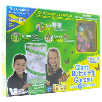 Giant Butterfly Garden