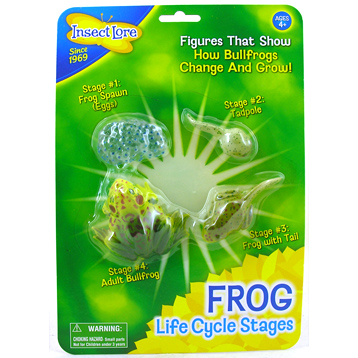 Life Cycle Figurines