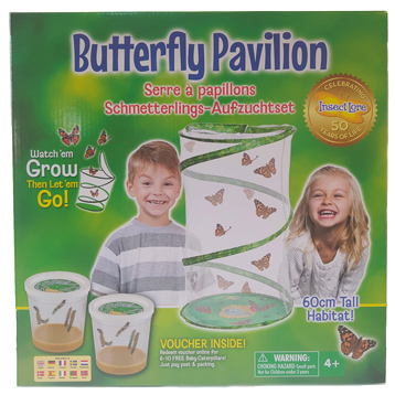Live Butterfly Pavilion Hatching Kit