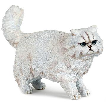 Persian Cat, White