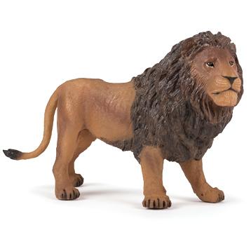 Large Male Lion