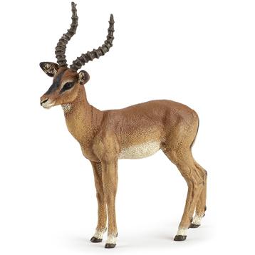 Male Black Faced Impala