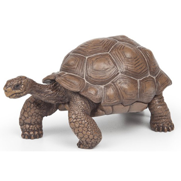 Wild Animal Kingdom Galapagos Tortoise Figure