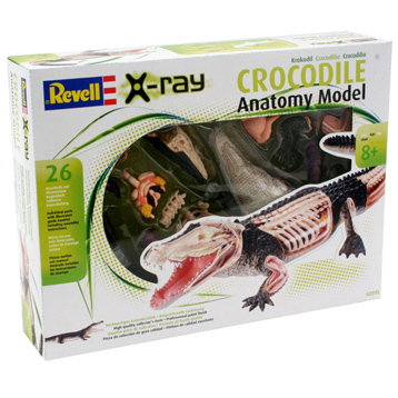 Crocodile Model Set