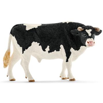 Holstein Bull