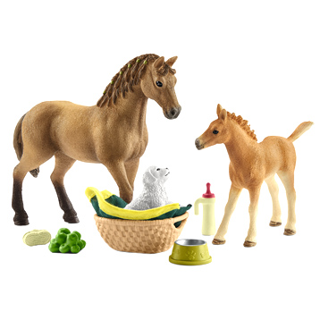 Horse Club Sarah's Baby Animal Care Playset