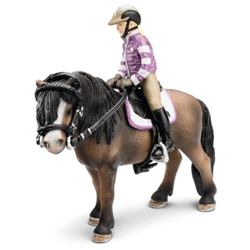 Pony Riding Set