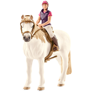Recreational Horse with Rider