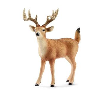 White-Tailed Deer Family