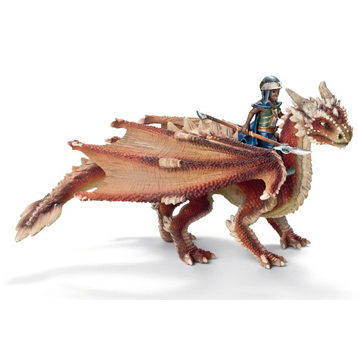 Young Dragon Rider